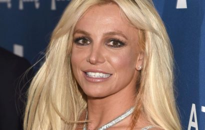 Britney Spears' former makeup artist says singer 'wants the most normal things' amid conservatorship battle