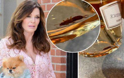 Bugs found in Lisa Vanderpump's rosé bottles