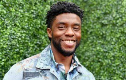 Chadwick Boseman Gets Standing Ovation at 2021 MTV Movie & TV Awards