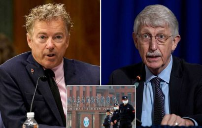 NIH head accuses Rand Paul of 'misinformation' about US ties to Wuhan lab