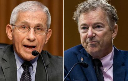Rand Paul: 'Little Dictator' Fauci 'acts like an ignoramus every day' over masks