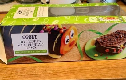 Tesco caterpillar cake Curly goes viral after customers spot 'morbid' packaging
