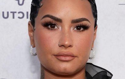The Surprising Thing Demi Lovato Is Investigating In Her New Peacock Series