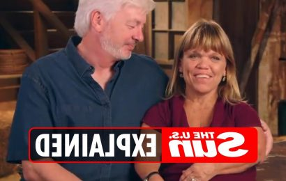 When is Little People, Big World star Amy Roloff and Chris Marek's wedding?