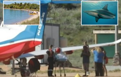 Boy, 10, attacked by two-metre shark while snorkelling with dad in Australia as beach closed