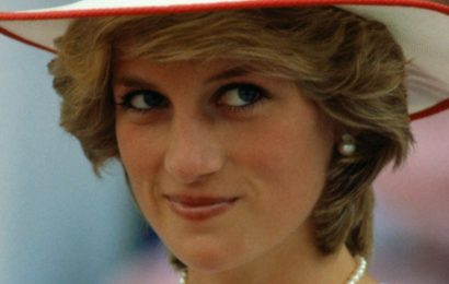 Is This How Princess Diana Would Have Felt About Meghan Markle?