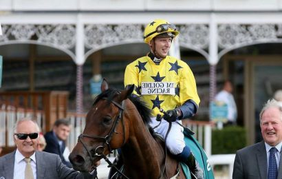 Jockeys Alistair Rawlinson and George Buckell rushed to hospital after fatal fall at Windsor races
