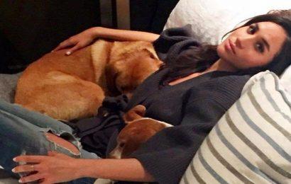 Meghan Markle gives rare glimpse inside home life as she discusses her adorable dogs