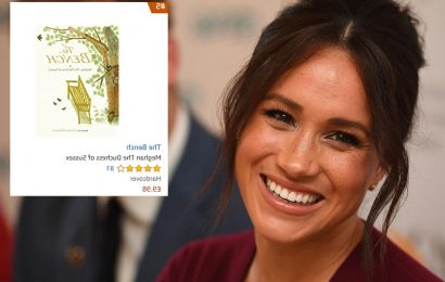 Meghan Markle's picture book The Bench reaches number five on Amazon bestsellers despite mixed reviews