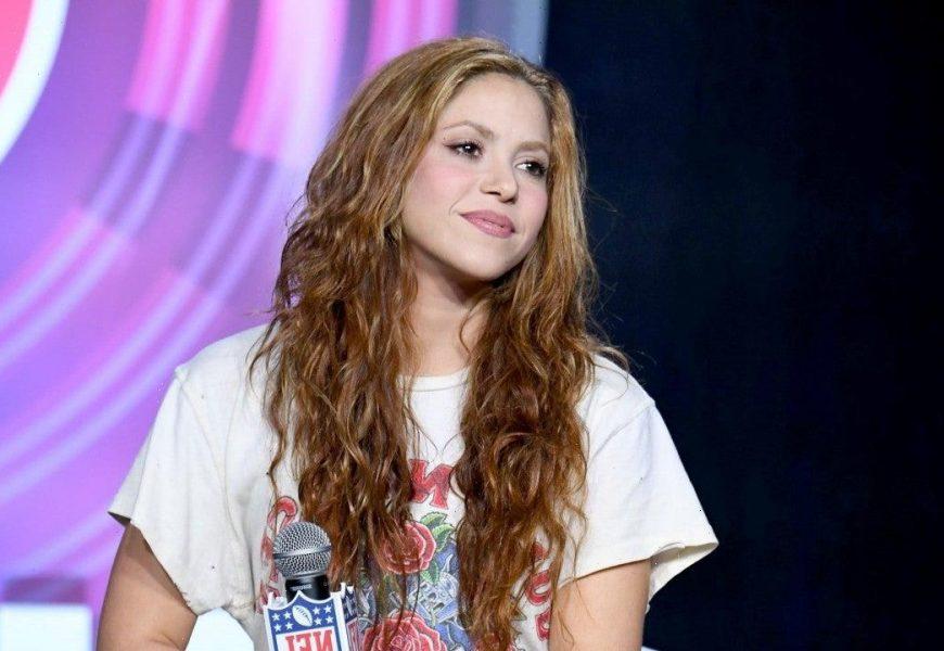 Shakira Shares Rare Photo of Look-Alike Son Sasha