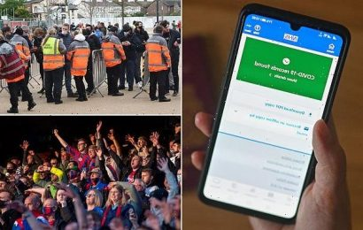 Covid passport scanner launched to support return to full stadiums