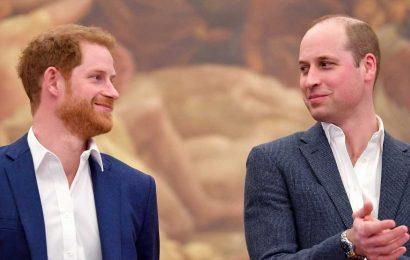 ITV cut claim Prince William's staff planted stories about Harry from brothers-at-war doc amid fears it was 'defamatory'