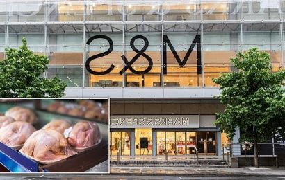 M&S becomes first UK supermarket to stop selling fast-grown chicken