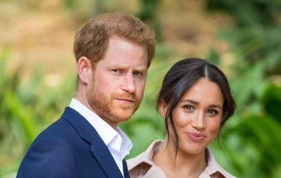 Prince Harry and Meghan Markle renew campaign against the UK media