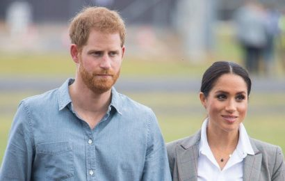 Prince Harry and Meghan Markle's daughter Lilibet finally added to royal line of succession