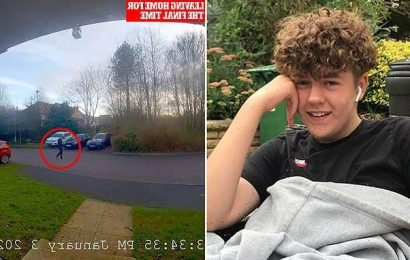 TOM RAWSTORNE: Killers ambushed autistic pupil over playground spat