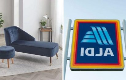 'Luxurious Aldi': Discounter launches chaise longues – customers could save £350