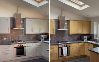 DIY fan transforms dull wooden cupboards to give kitchen budget facelift for just £25