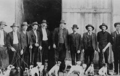 From the Archives, 1921: Bubonic plague outbreak in Brisbane