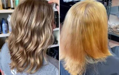 Hair stylist shows off customer's horror home dye job as she comes to the rescue