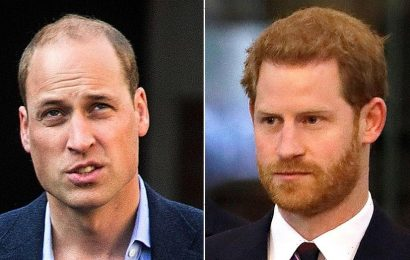 Prince William, Prince Harry still have a 'pretty difficult' relationship despite reunion, royal expert claims