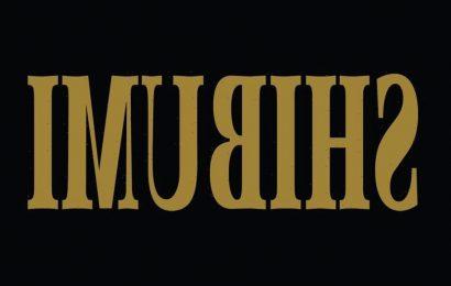 'Shibumi': John Wick Franchise Director Chad Stahelski Will Make Another Assassin Movie