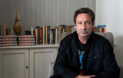 'The Chair' Recreated That Memorable 'X-Files' Speedo Scene With David Duchovny