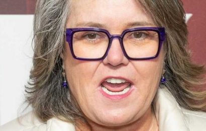 The Real Reason Rosie O'Donnell Left The View
