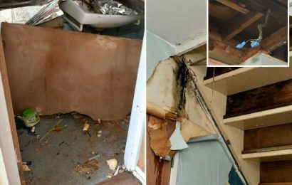 Desperate mum left without electricity after ceiling COLLAPSES – and 'council can't find new home' after 2 years of hell