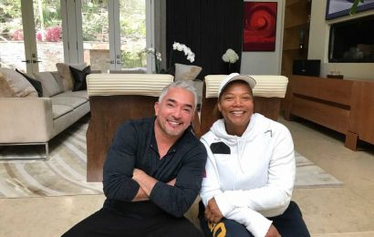 Lawsuit alleges Cesar Milian's dog killed Queen Latifah's dog and he lied about it