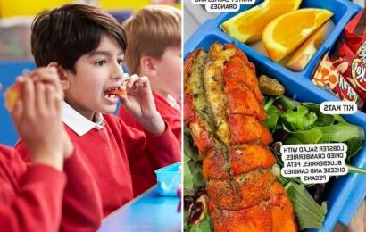 Mum sends eight-year-old son to school with LOBSTER TAIL and candied pecans at 'his request'