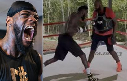 Watch Deontay Wilder smash pads for 12 rounds at Alabama training camp as Tyson Fury trilogy fight approaches