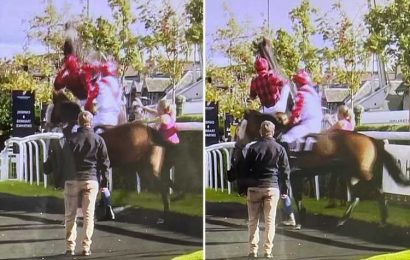 Watch terrifying moment horse dumps jockey and bolts off past shocked stable staff in pre-race incident at Musselburgh