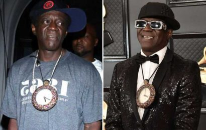 Flava Flav arrested for domestic violence in Las Vegas after he 'grabbed woman & threw her down'