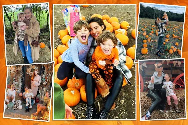 How celebs are all going crazy for pumpkins this Halloween with 17m to be sold in Britain