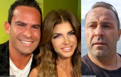 Joe Giudice Thinks Teresa's Engagement to Luis Ruelas Is 'a Bit Quick'