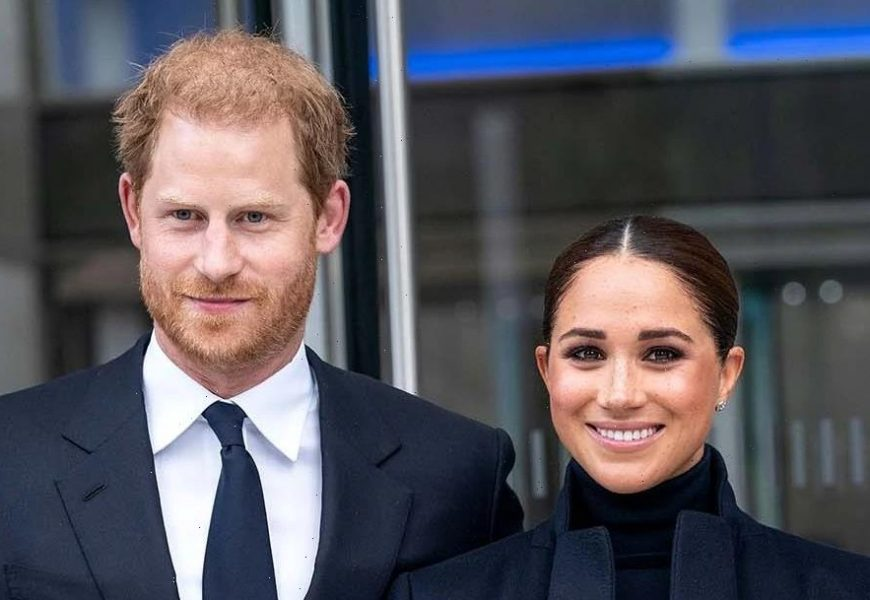 Meghan Markle: Prince Harry and I Were 'Overwhelmed' After Lili's Birth