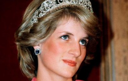 'Priceless' Princess Diana heirloom 'to go to granddaughter Charlotte' instead of Lilibet Diana