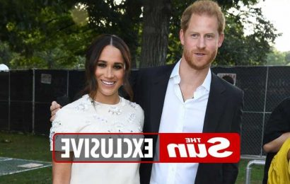 Prince Harry may name royal 'racist' in new £15m book leaving Buckingham Palace terrified