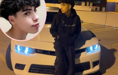 Teen TikTok Star & 3 Friends Killed In Fiery Car Crash During Police Chase
