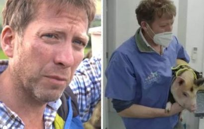 The Yorkshire Vet's Julian on struggles of filming with animals 'Doesn't go to plan'